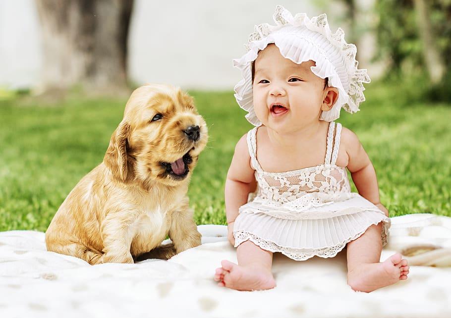 baby-dog-animal-cute