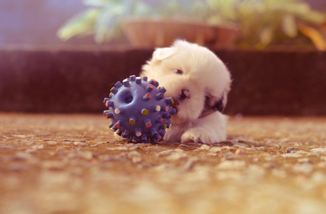 ball-blur-colors-little-130764