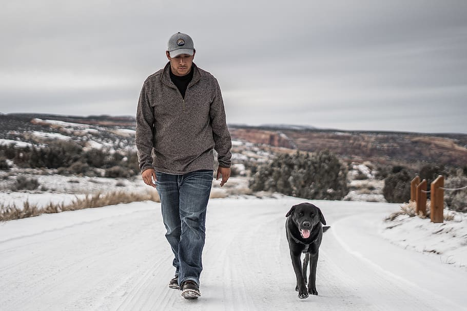 man-walking-beside-black-dog-during-daytime