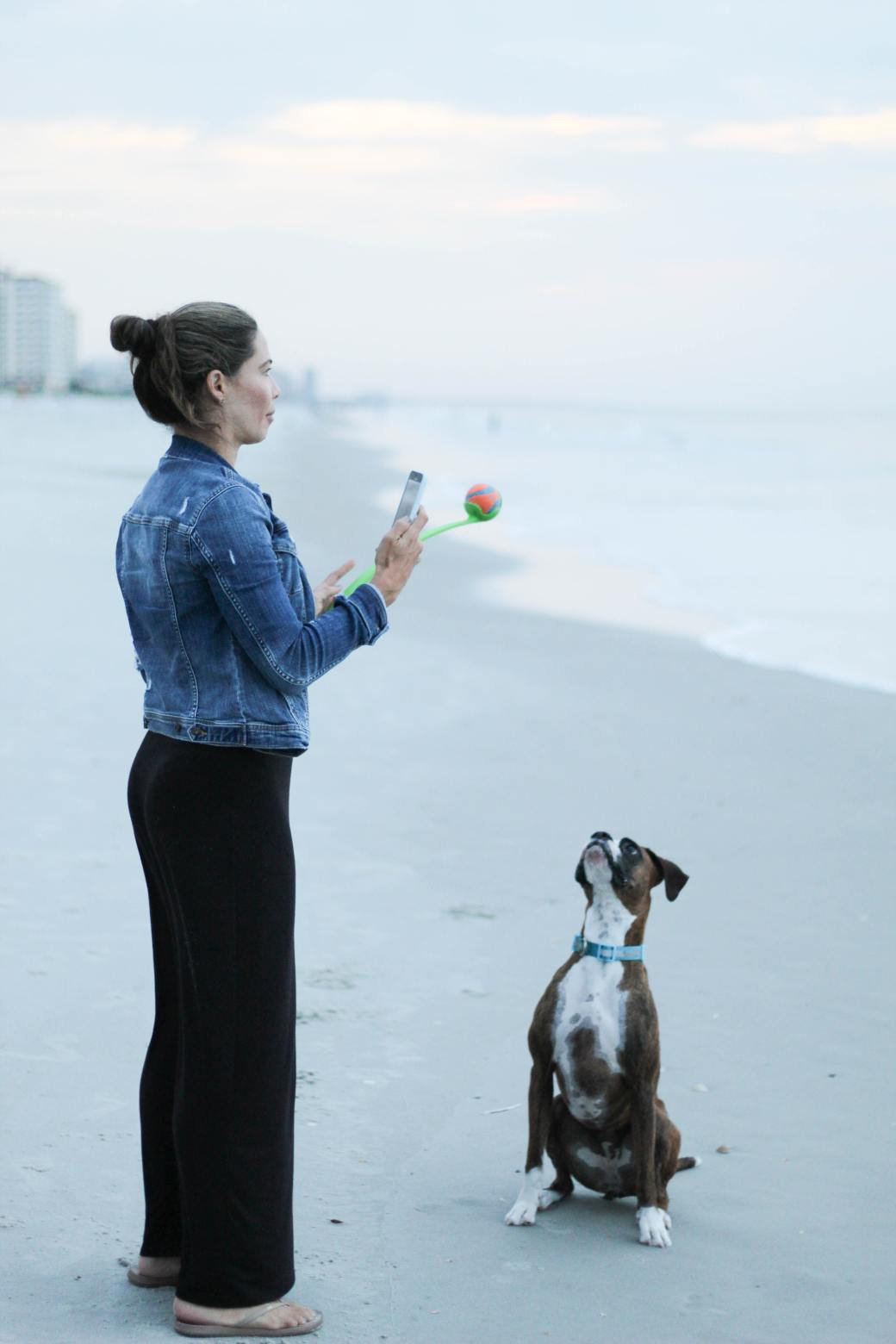 woman-and-her-pet-dog-3617627